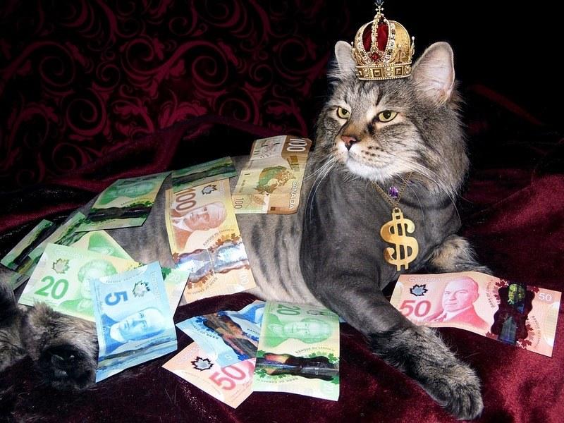 Кредитная зависимость (кредитомания) – что это и как избавиться?